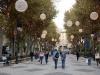 Palma Passeig Des Born