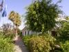 puerto-caleta-apartments-garden