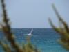 Sotavento Windsurf