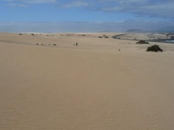 Natural Park Dunes Corralejo